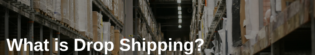 What is Drop Shipping in Track-and-Trace Solutions for Drop Shipping