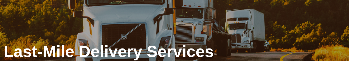Last Mile Delivery Services in Last Mile Delivery Software