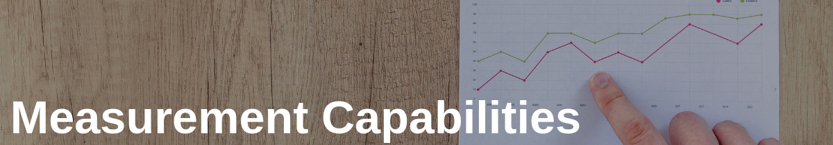 Measurement Capabilities in Managing 3PL Partnerships